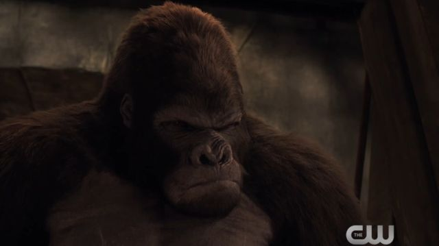 Go Ape with the Extended Attack on Gorilla City Trailer