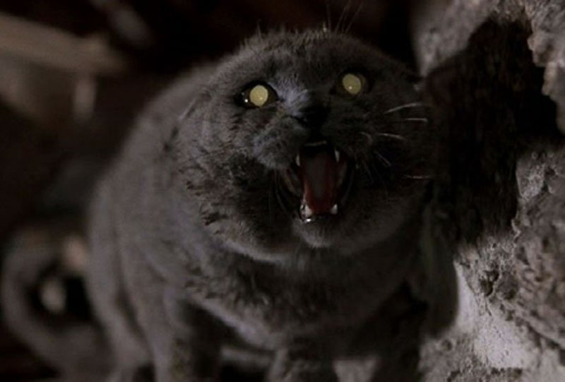 Paramount Digs Up Two Pet Sematary Directors