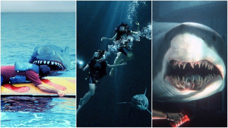 The 10 Best Shark Movies