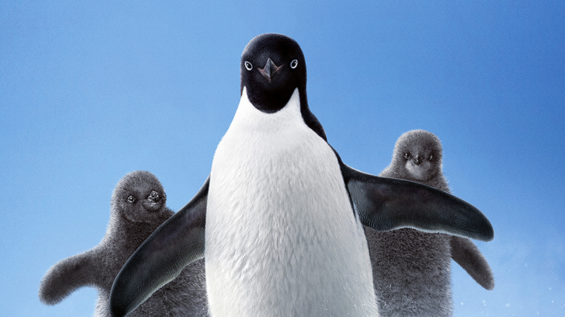 Disneynature Debuts Penguins Poster For First Day of Winter