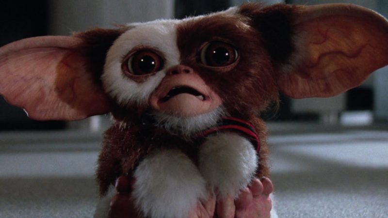 GREMLINS Hatching an Animated Series