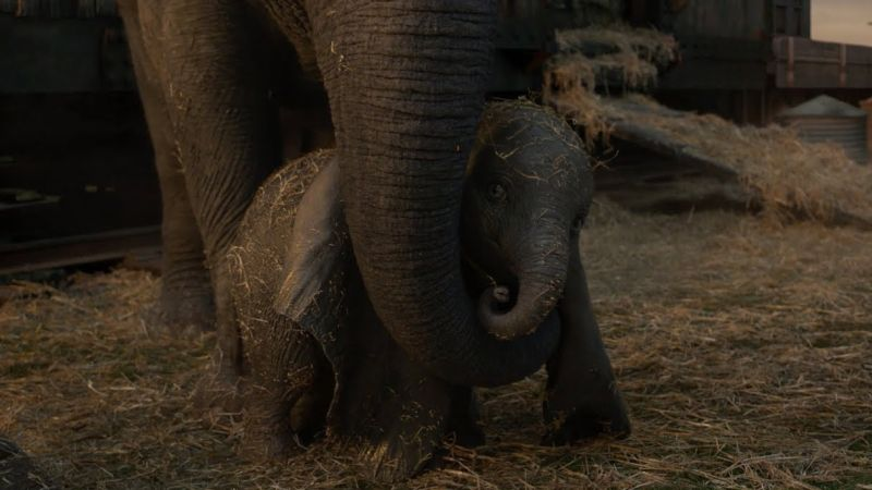 Dumbo Will Take You to New Heights in New International Trailer
