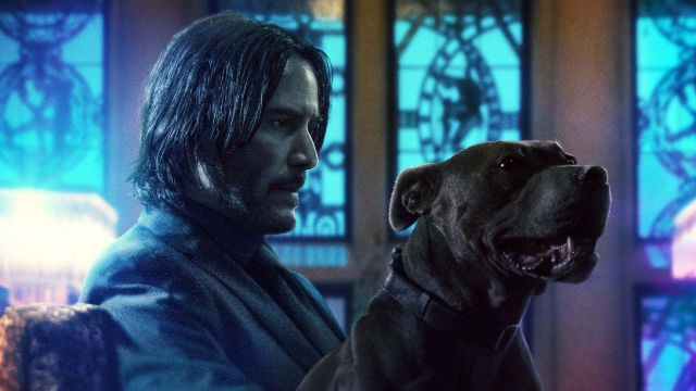 best dogs in film