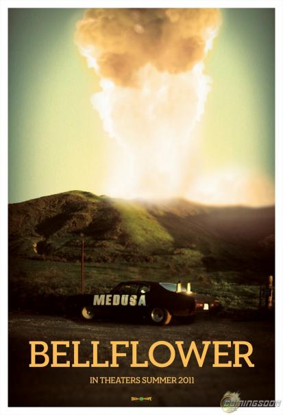 Bellflower_1.jpg