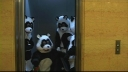 #43 Night Pandas (Jackass: The Movie)