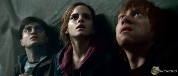 Harry_Potter_and_the_Deathly_Hallows:_Part_2_24.jpg
