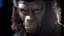 4. Conquest for the Planet of the Apes (1972)