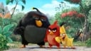 The Angry Birds Movie (May 20)