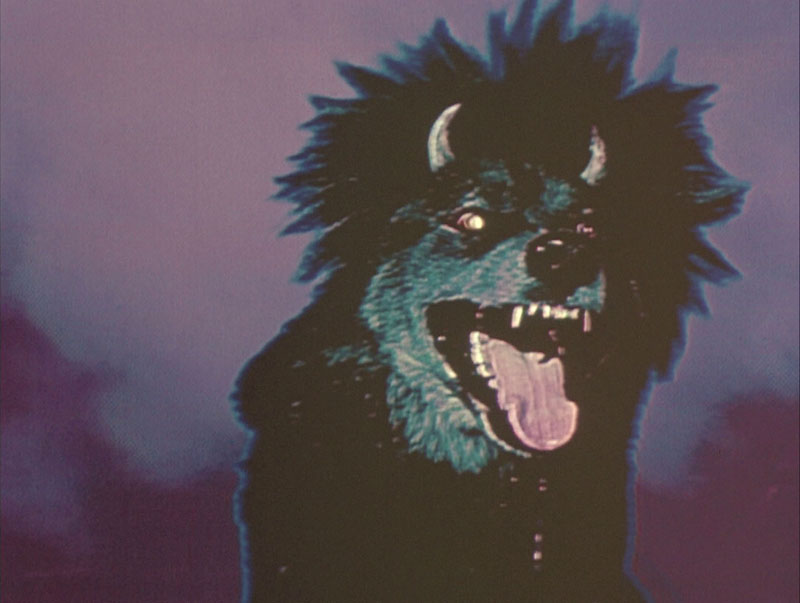 #7. Devil Dog: The Hound of Hell (1978)
