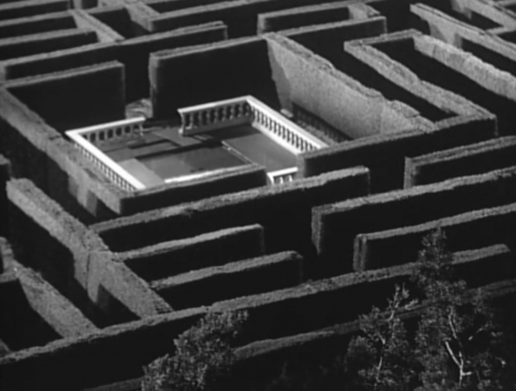 The Best Maze Movies Of All Time Comingsoon Net